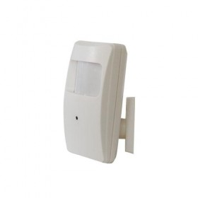 1/3 COLOUR PIR DETECTOR 3.6MM 42NTVL